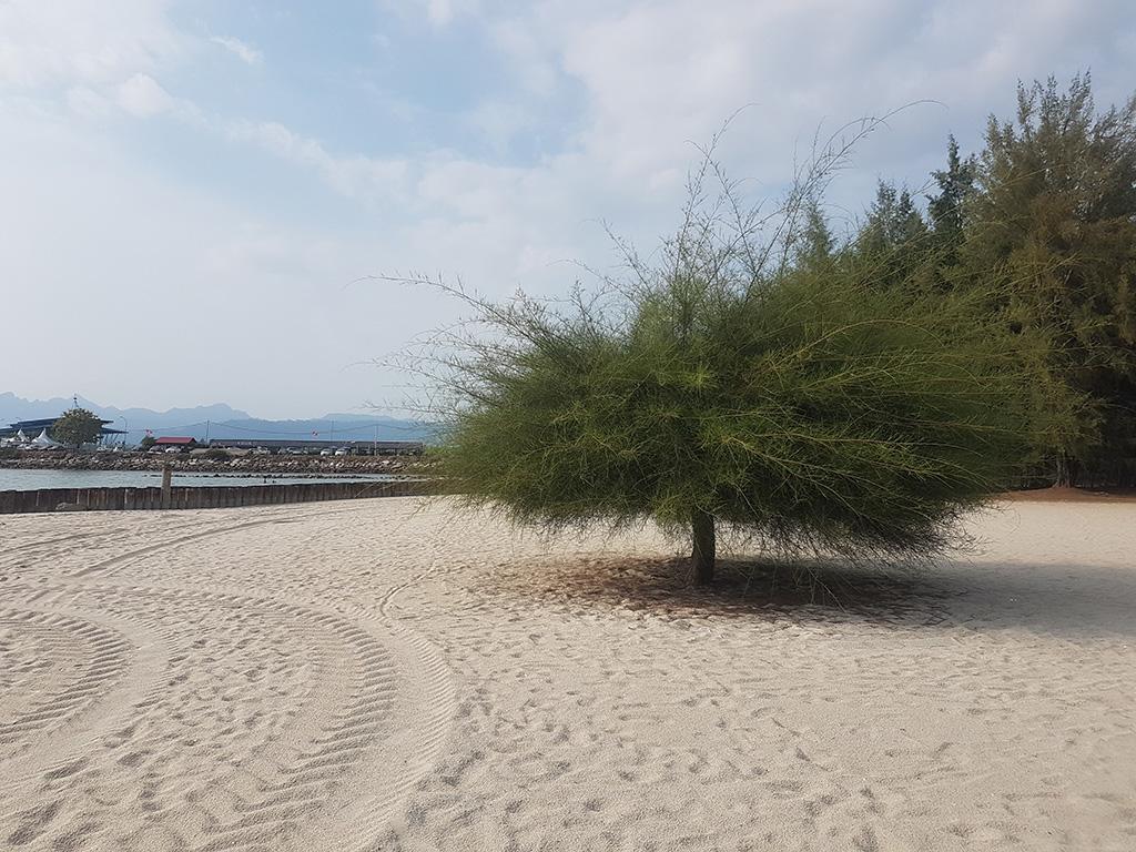 pantai langkawi