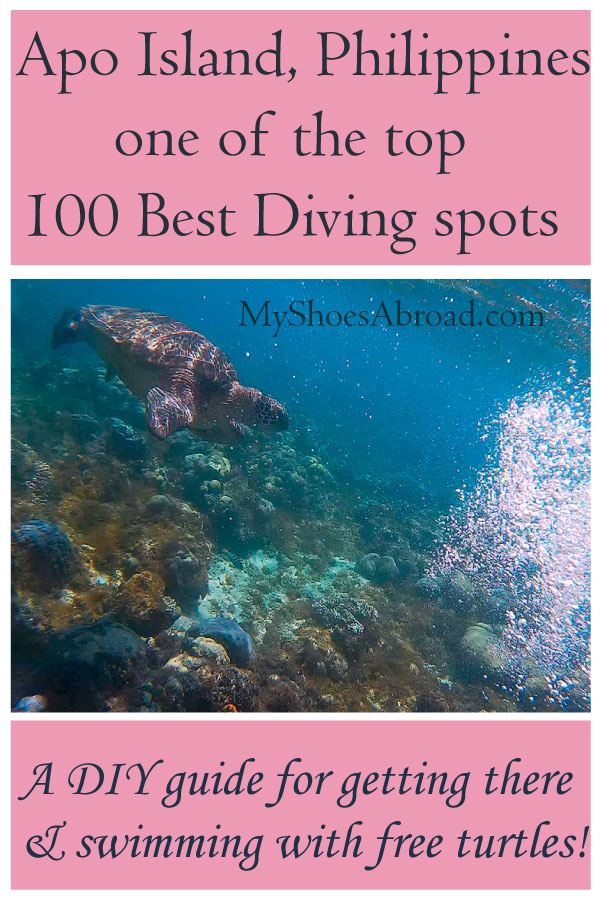 How to get to one of the top 100 Best diving spots in the world and swim with turtles!