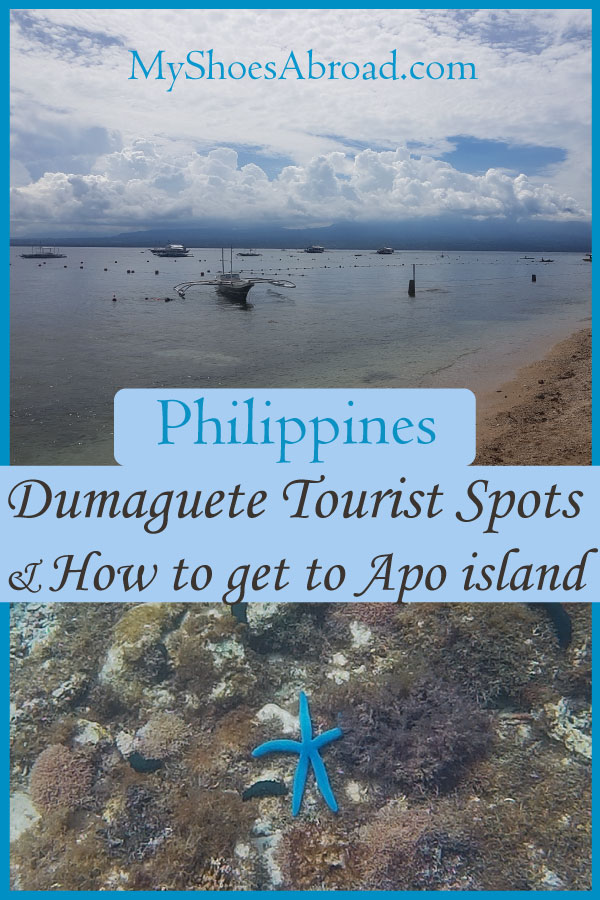 Dumaguete to Apo ISland and what to do in Dumaguete