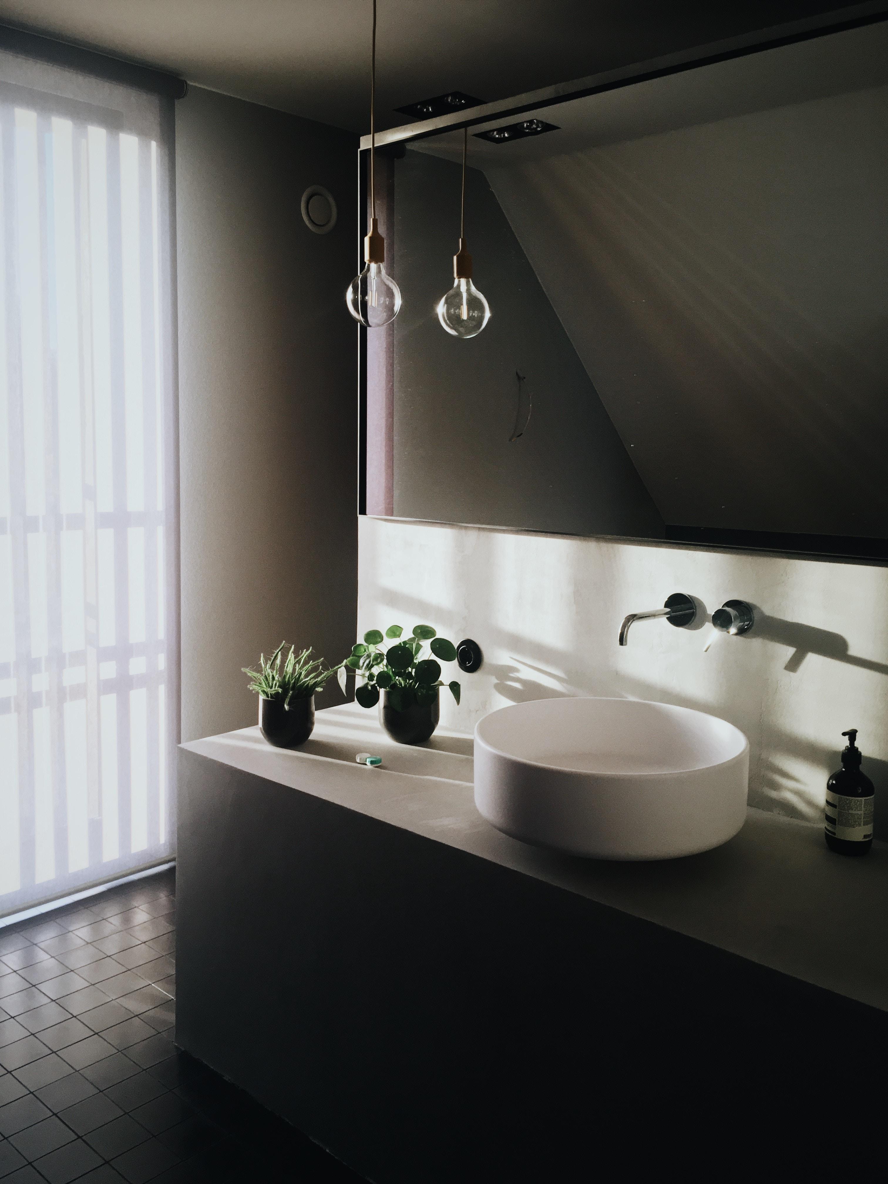 bathroom and plants