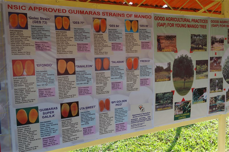 National Mango Research and Development Center guimaras