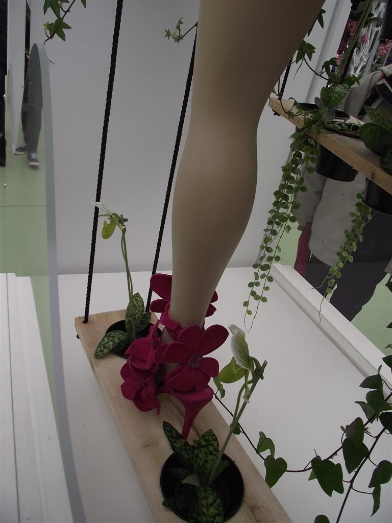 Keukenhof Exhibition Shoes